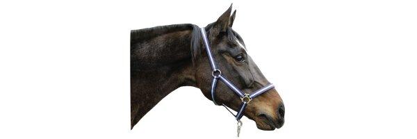 Zubehör für das Pferd