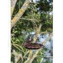 Vogeltränke Gusseisen 250ml / 16cm