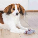 Hundesocken, Anti-Rutsch M-L