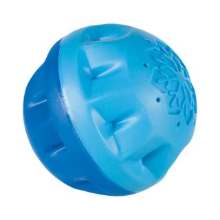 Kühl-Ball TPR 8 cm